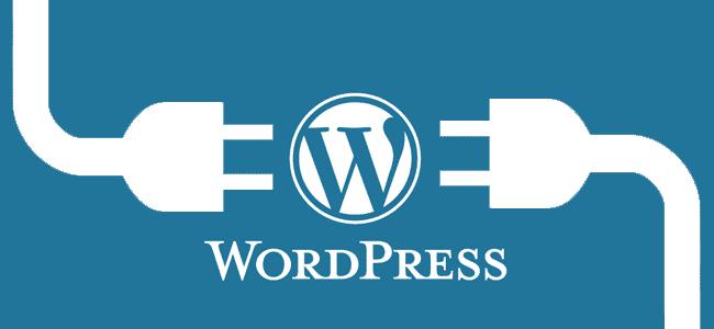 Wordpress logo in between two connectors
