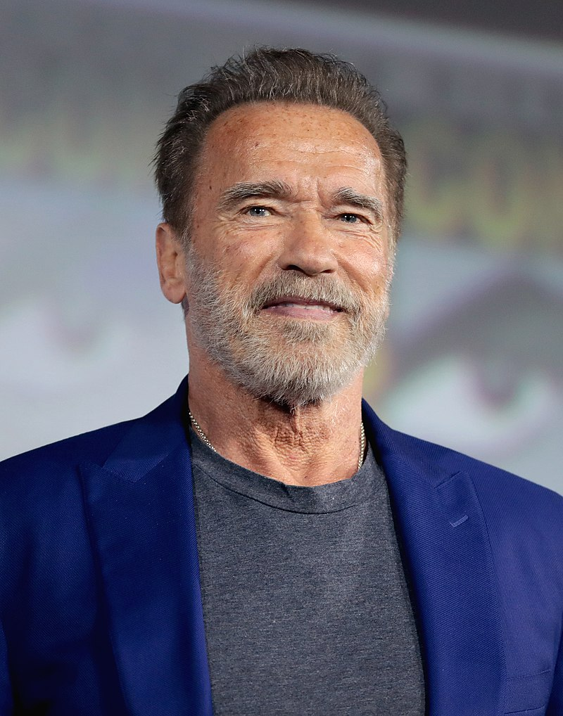 Picture of Arnold Schwarzenegger at the age of about 70 years old with scraggly gray beard, aged skin, receding hairlkne, slight smile, direct eye contact, gray t-shirt, blue blazer
